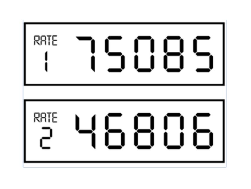 Two rate single display meter