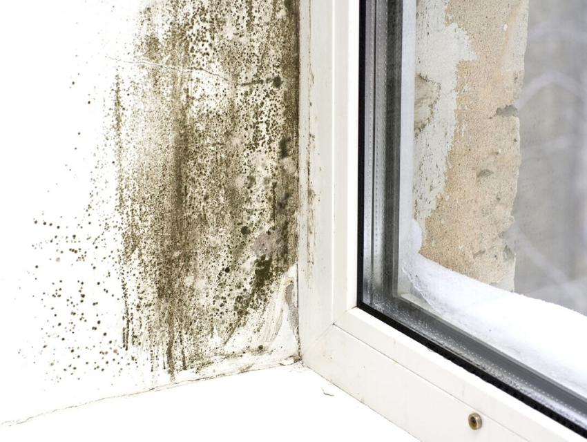 Damp around a window ledge